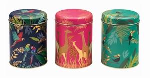 Theeblikken Set van 3 blikken Giraffe, Toekan, Papegaai